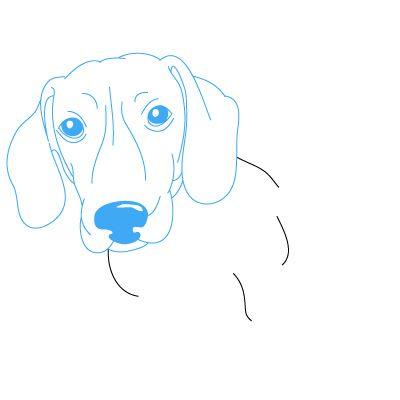 Как нарисовать Daschund