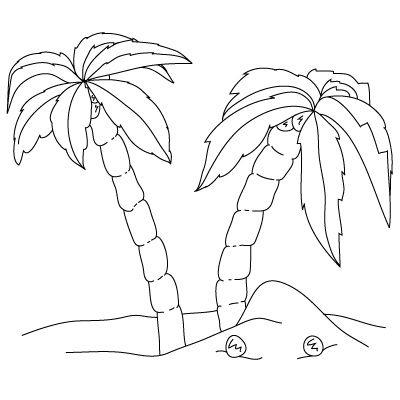 Как �и�ова�� пал�м�