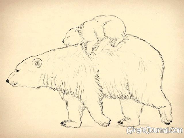 рисунки медведя белого