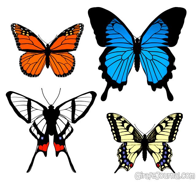 Как сделать бабочку из бумаги на стену пошагово