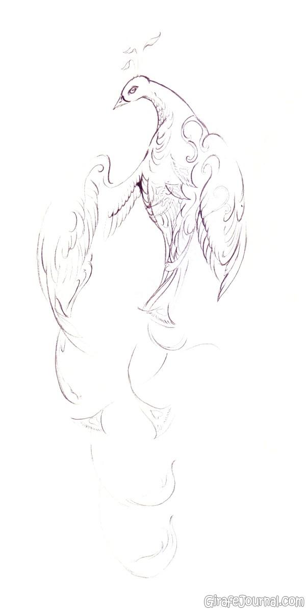 Как нарисовать птицу поэтапно?
