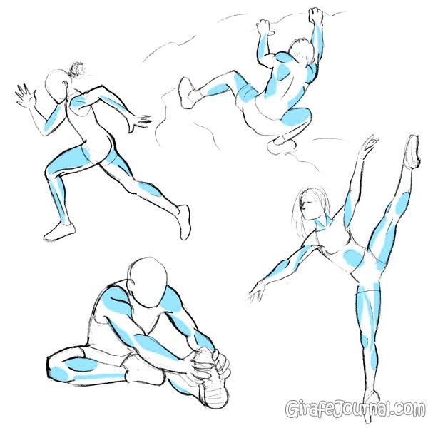 Как рисовать мышцы?