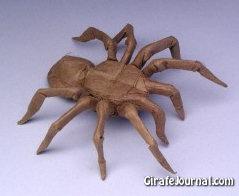 Оригами паук: видео инструкция