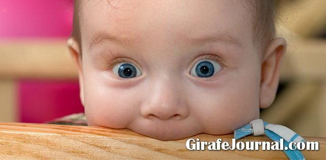 Розвиваючі іграшки для дітей 2-4 років