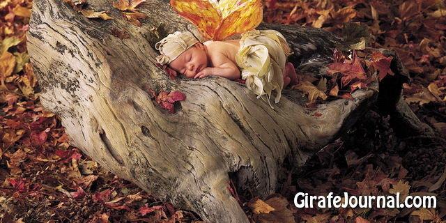 расположение ребенка в утробе фото