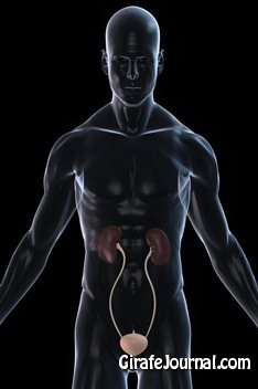 Как лечить цистит у мужчин картинка
